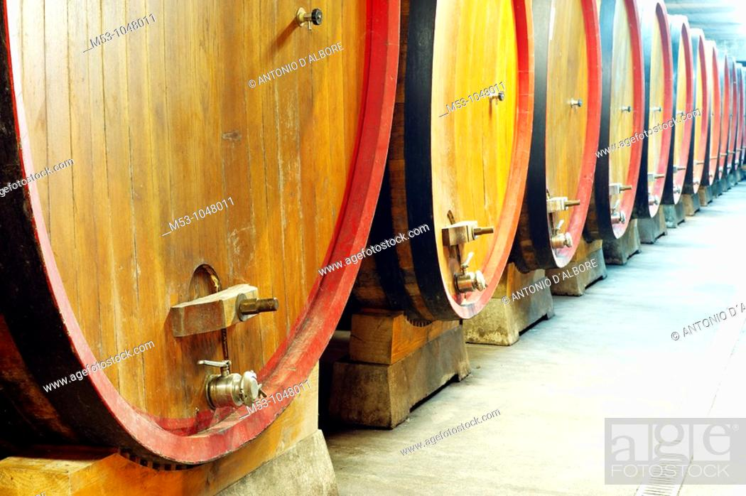Stock Photo: large size wooden aging barrells in a large underground winery  dugenta  province of benevento  italy  europe.