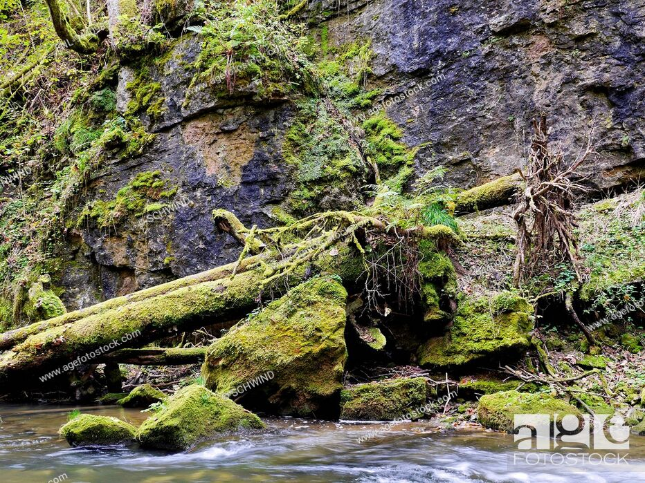 Stock Photo: Gutach Canyon in Black Forest, Baden-Wuerttemberg, Germany.
