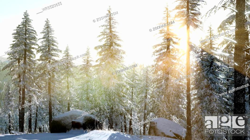 4k Aerial Snow Covered Trees Drone Footage Landscape Winter Nature Beautiful Europe Forest Mountain Stock Photo Picture And Royalty Free Image Pic Wr3520655 Agefotostock