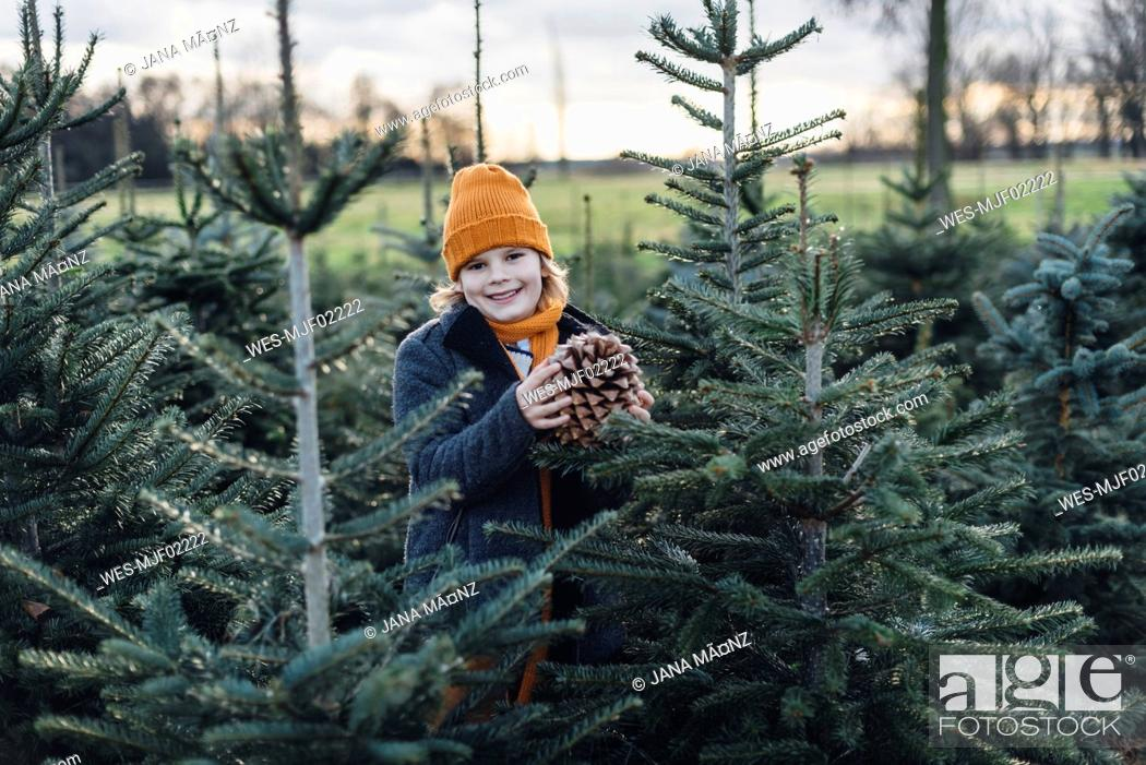 Imagen: Little boy standing among fir trees, holding pine cone.
