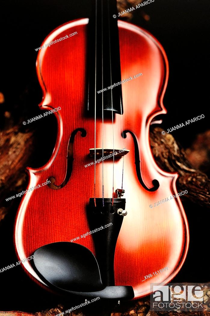 Stock Photo: Violin photographed in studio.