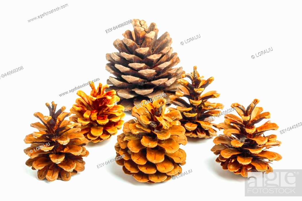 Stock Photo: Set of Old brown cones isolated on white background.