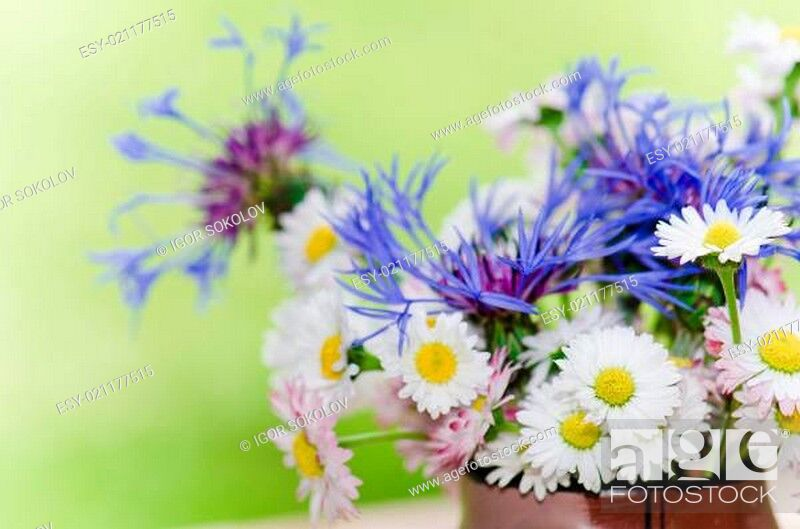 Stock Photo: Bouquet of daisies on the table in the garden. Summer background.