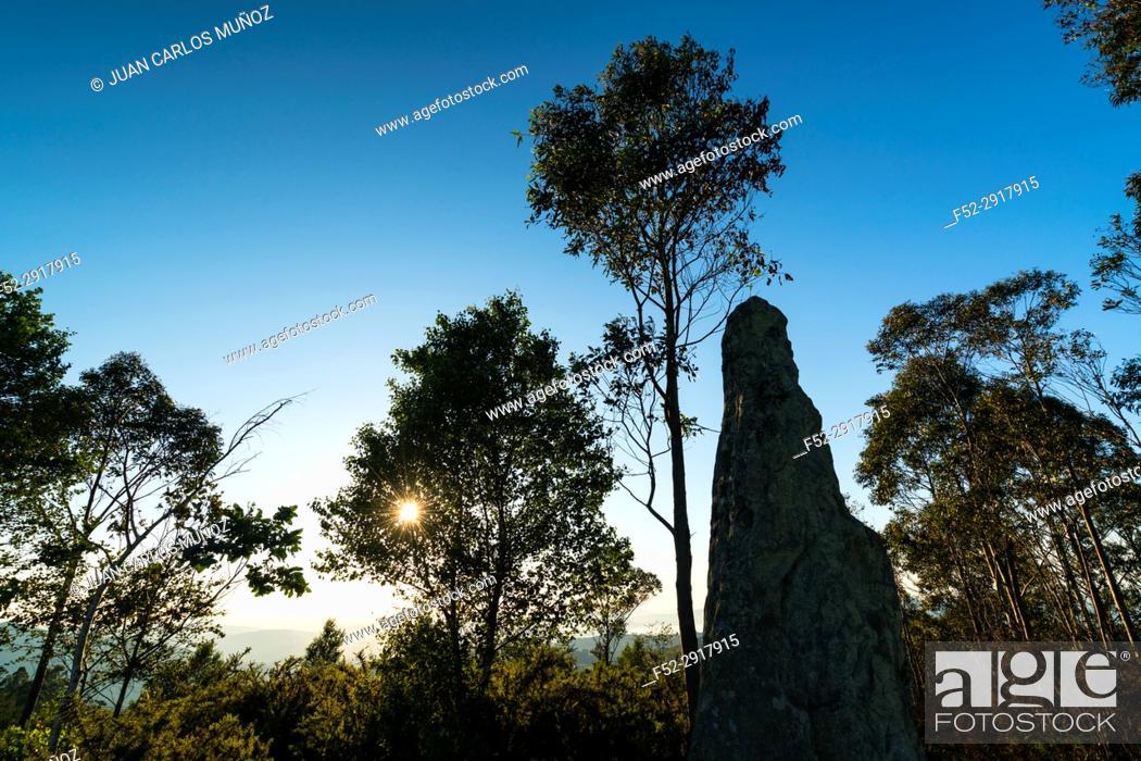 Stock Photo: Menhir Yelso o Ilso de Hayas, Guriezo, MOC Montaña Oriental Costera, NATURA 2000, Cantabria, Spain, Europe.
