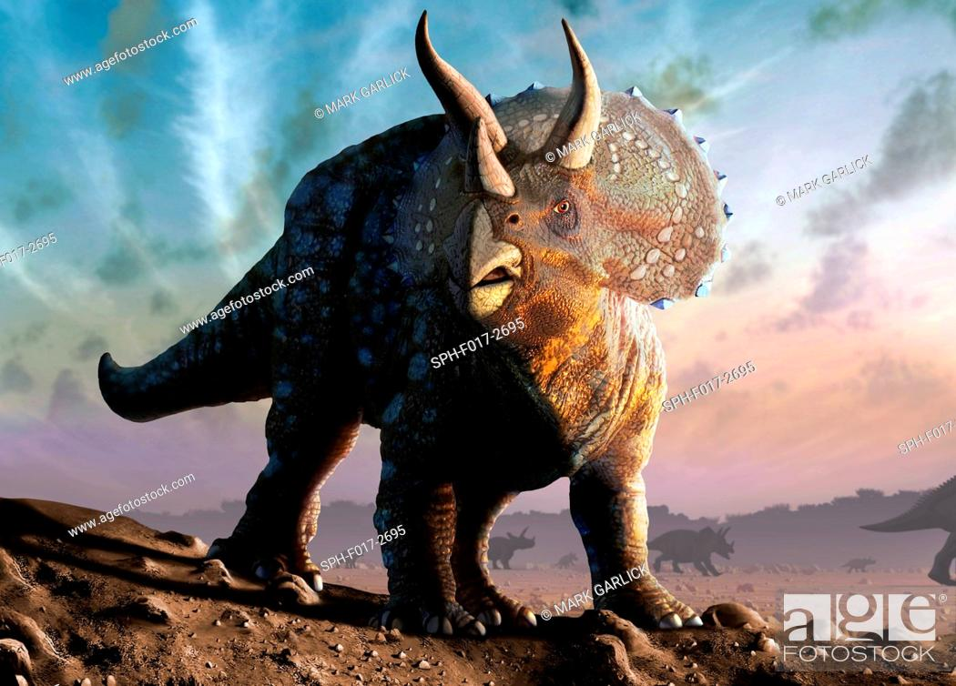 Stock Photo: Artwork of a triceratops horridus dinosaur. These animals were common in the late Cretaceous period, from around 70 million years ago until the extinction of.