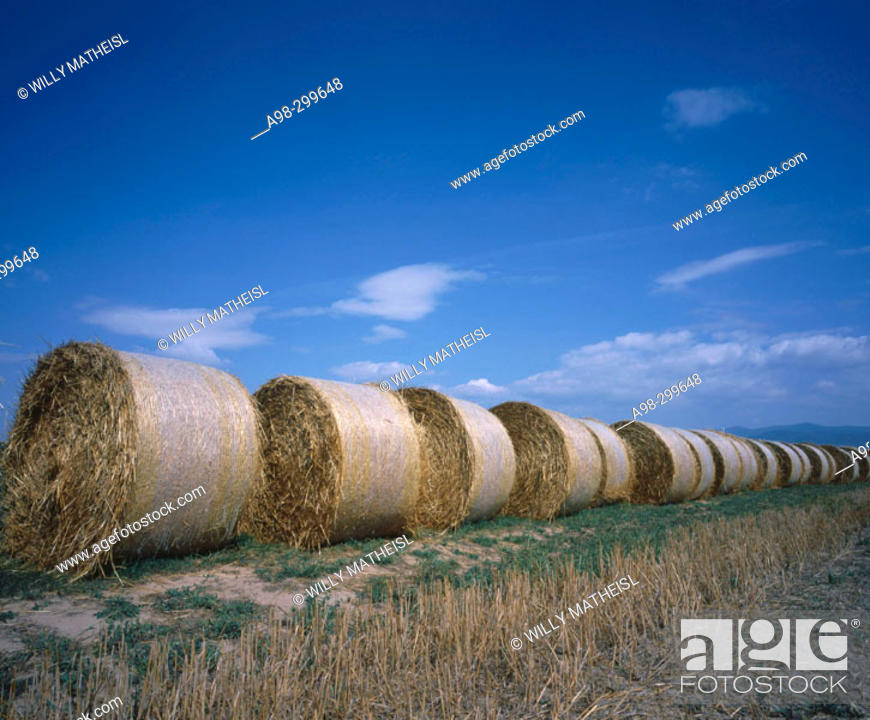 Photo de stock: Straw bales. Bavaria. Germany.
