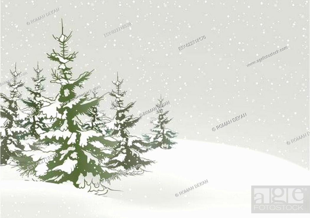 Stock Vector: Snow And Conifers.