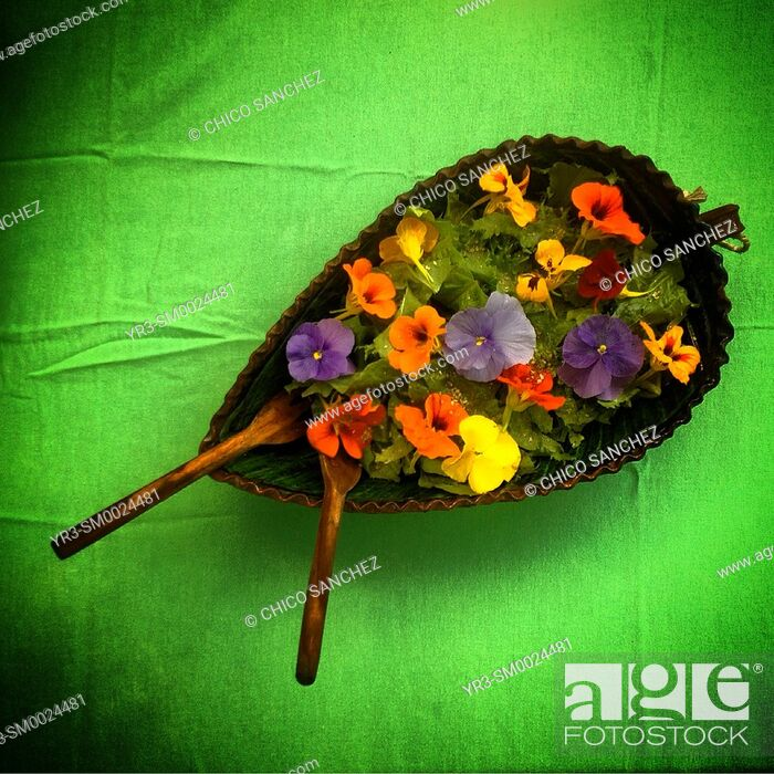 Stock Photo: A salad with flowers in a green table in Banco de Semillas Tepetixtla seeds bank in Mexico State, Mexico.
