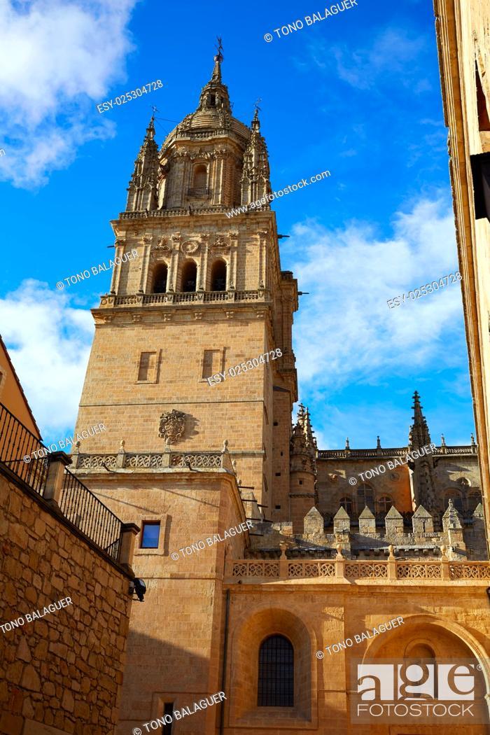 Stock Photo: Salamanca Cathedral in Spain by the Via de la Plata way to Santiago.