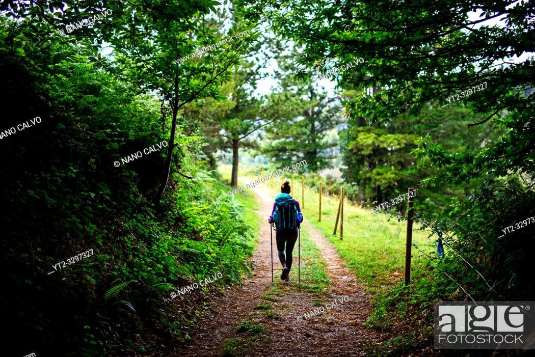 Stock Photo: Young female pilgrim walking the Way of Saint James (Camino de Santiago), Galicia, Spain.