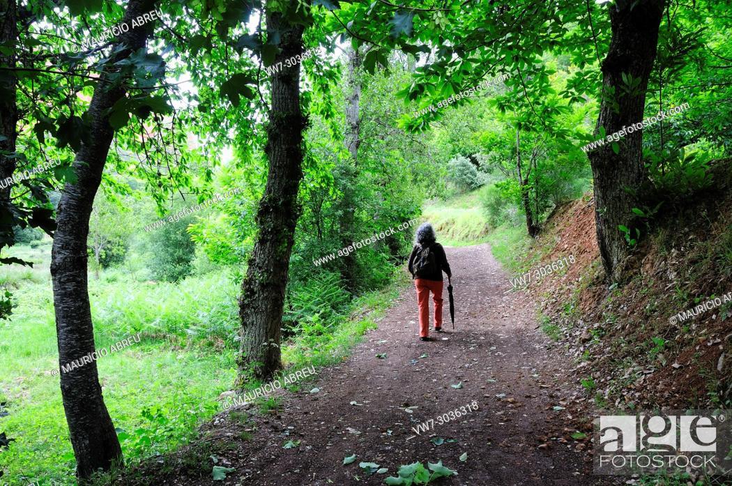 Imagen: Walking trail in Las Médulas, once a roman gold mine. Nowadays a UNESCO World Heritage Site. Castilla y León, Spain.