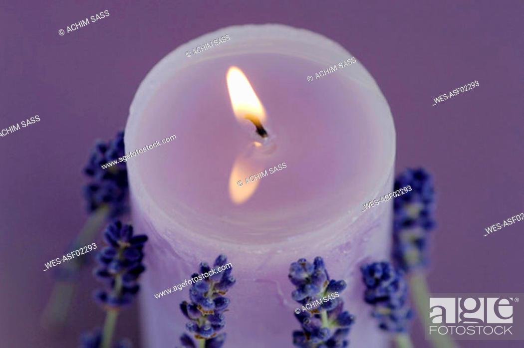 Stock Photo: Burning lavender candle.