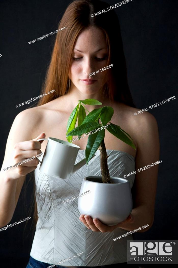Stock Photo: woman watering potted flower.