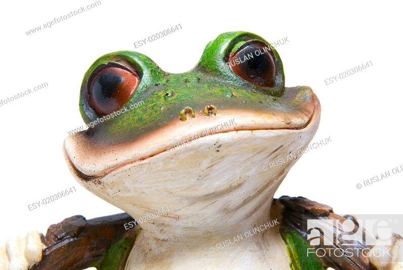 Stock Photo: frog macro.