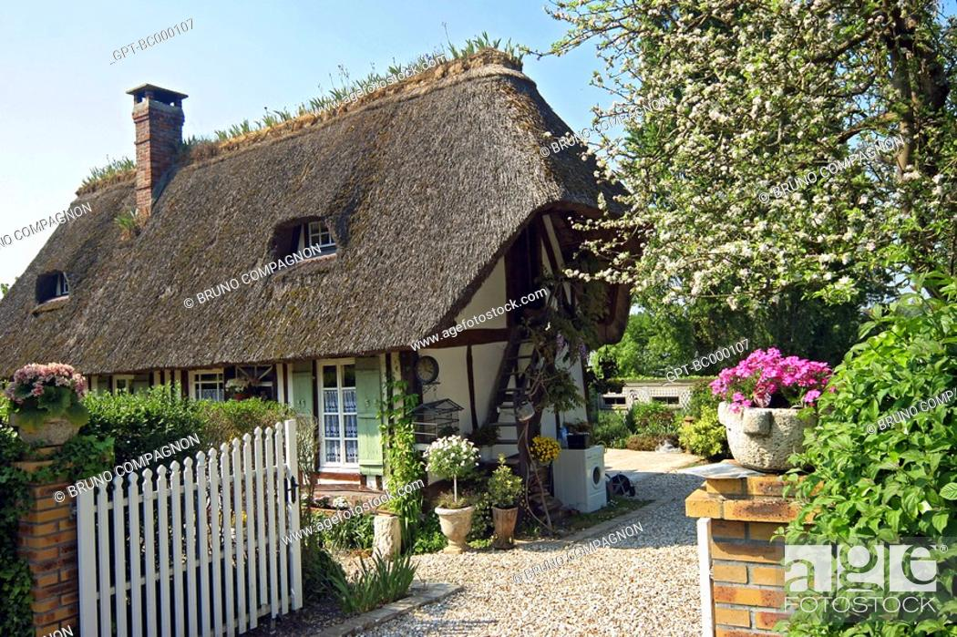 Thatched Roof Marais Vernier Normandy House Second Home Eure 27 France Stock Photo Picture And Rights Managed Image Pic Gpt Bc000107 Agefotostock