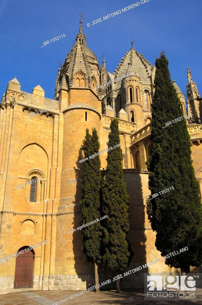 Stock Photo: Old cathedral, 12th - 13th century, Salamanca. Castilla-Leon, Spain.