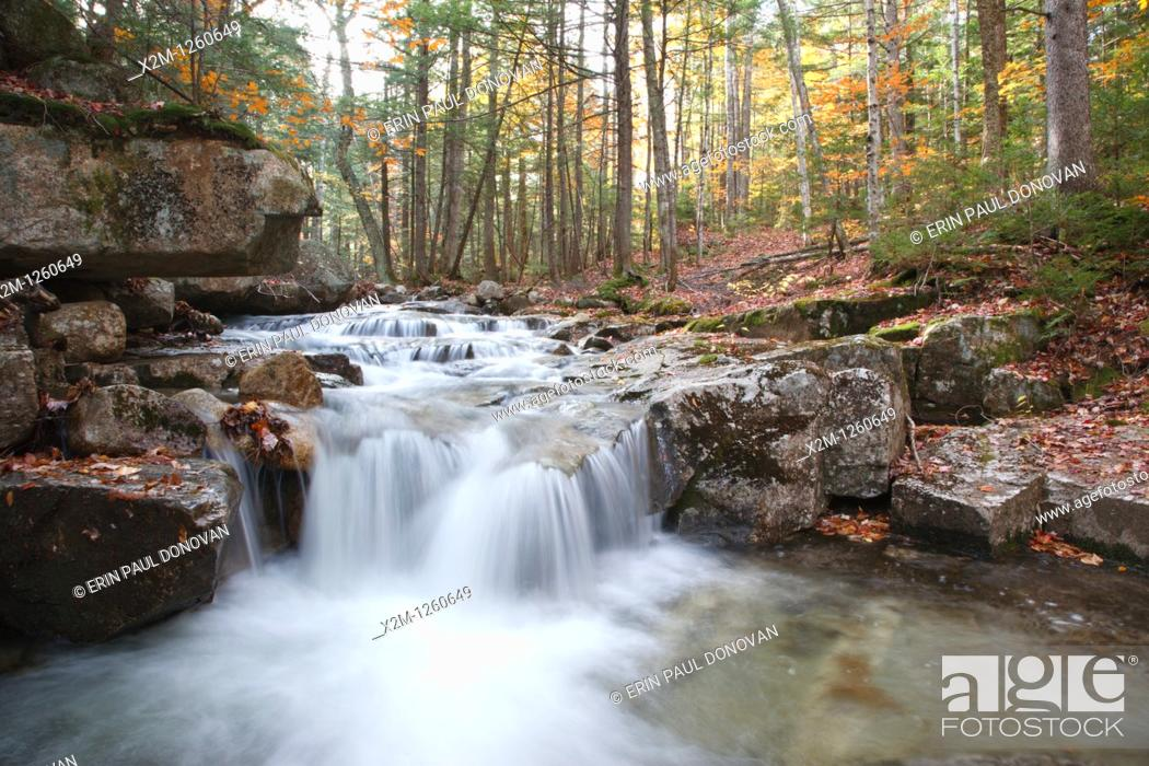 Stock Photo: Twin Brook along the Bolles Trail in Albany, New Hampshire USA.