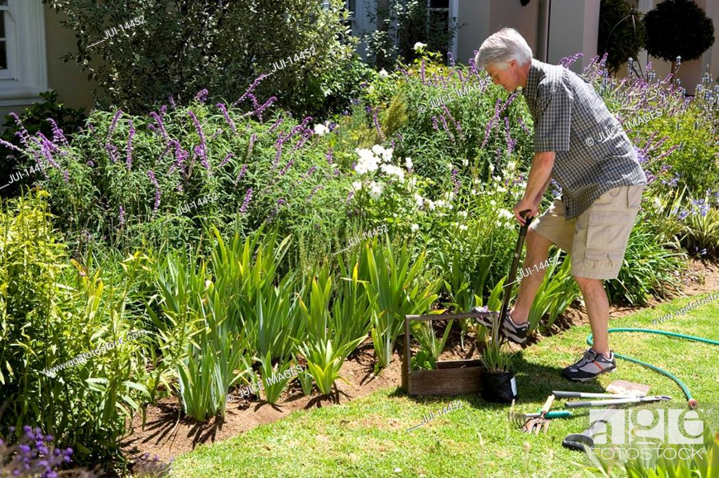 Stock Photo: Senior man gardening, side view.