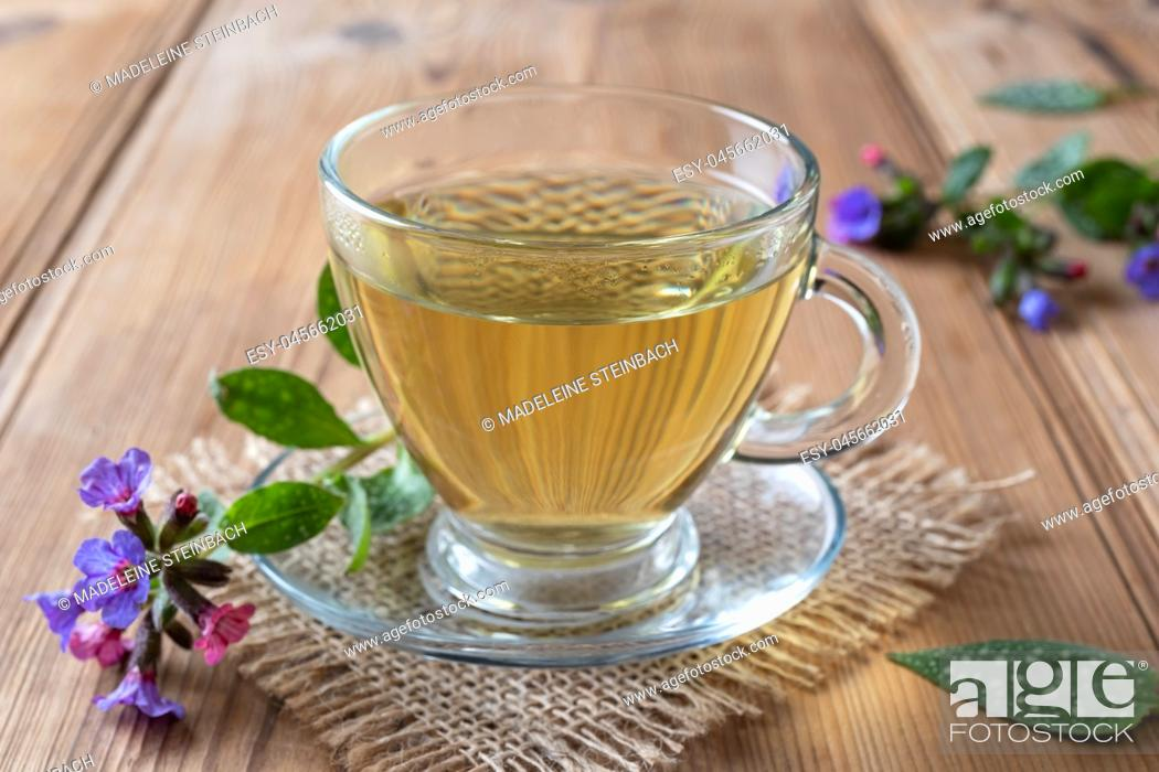 Stock Photo: A cup of herbal tea with fresh lungwort, or pulmonaria flowers.
