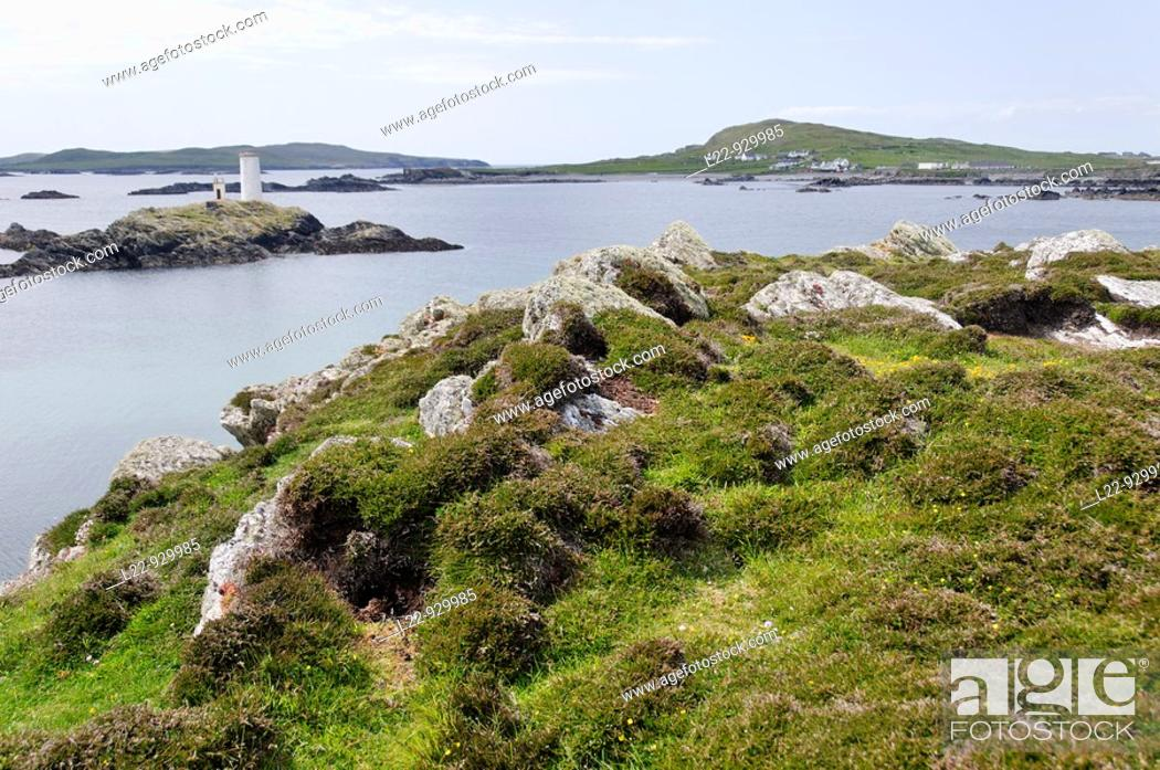 Inishbofin (meaning 'Island of the White Cow') is an island lying