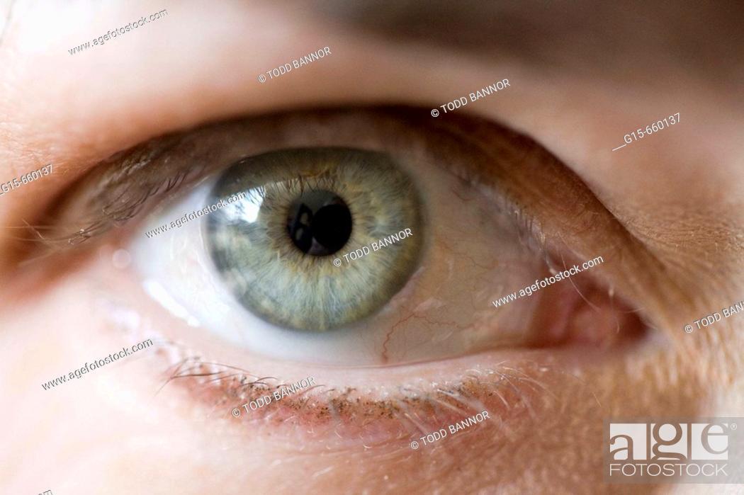 Stock Photo: Closeup of Caucasian eye.