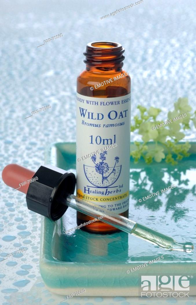 Stock Photo: Homeopathic remedies: Wild oat.