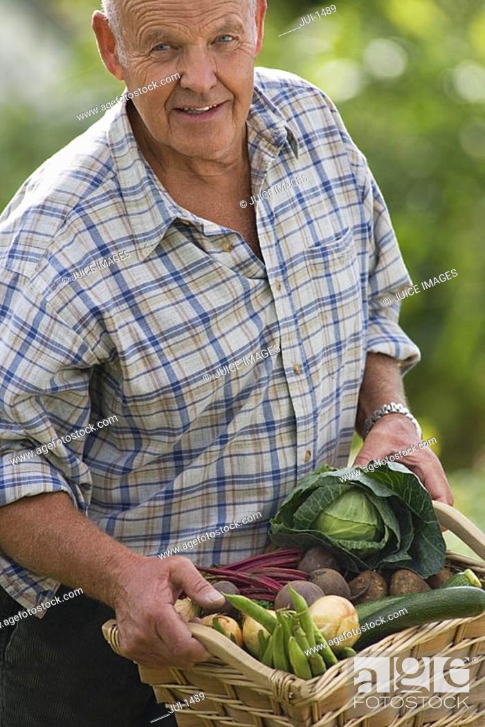 Stock Photo: Senior man carrying basket of fresh vegetables from garden, smiling, portrait.