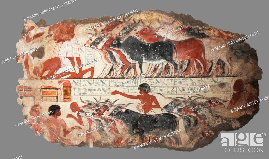 Stock Photo: Nebamun viewing his geese and cattle. These paintings are parts of a wall showing Nebamun inspecting geese and cattle. He watches as farmers bring the animals.