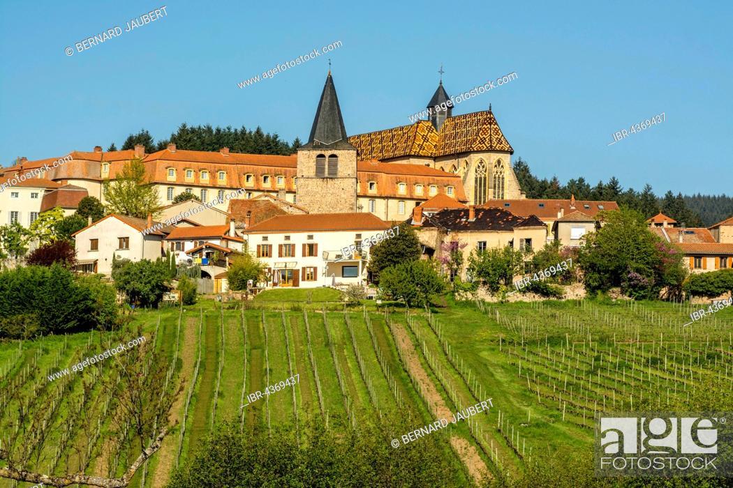 Stock Photo: Ambierle, village in Côte Roannaise, vineyard, Ambierle village, Roanne arrondissement, Loire département, Auvergne-Rhône-Alpes region, France.