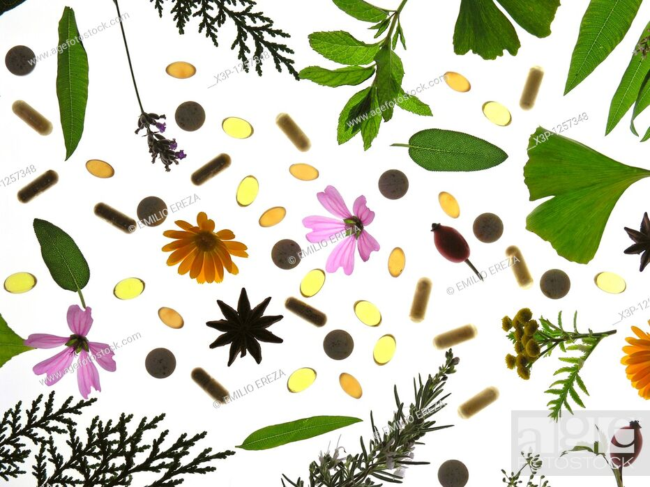 Stock Photo: Medicinal plant  Capsules and pills.