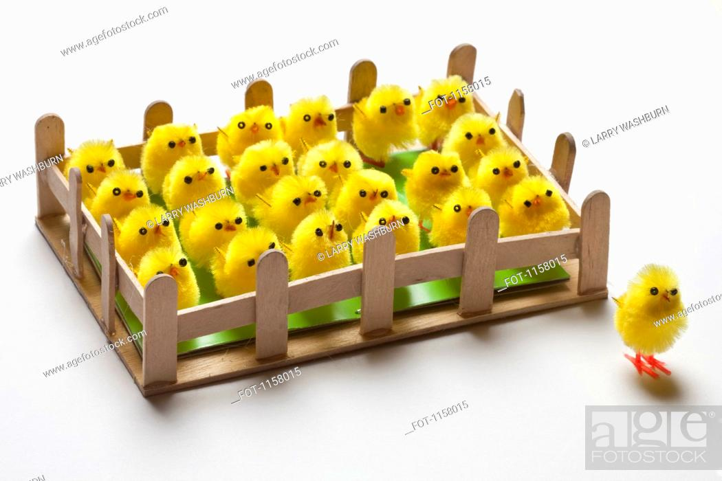 Stock Photo: A group of toy Easter chicks fenced in with one on the outside of the fence.