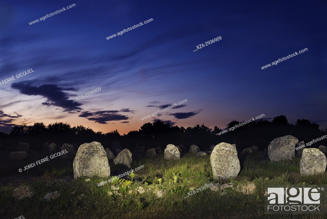 Stock Photo: Megalithic Carnac stones, Alignements de Carnac, Carnac, Morbihan, Brittany, France, Europe.