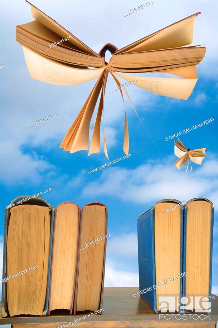 Stock Photo: Books.