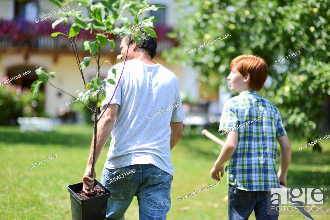 Stock Photo: Father and boy holding sapling in garden.