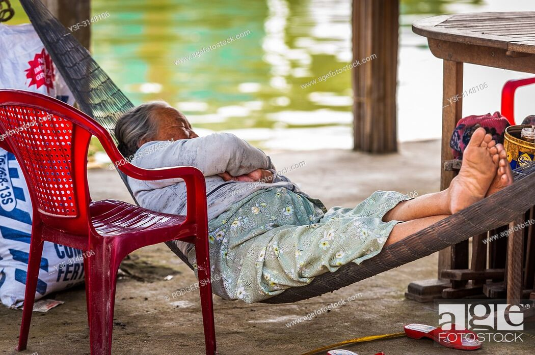 Stock Photo: It's after lunch so it's siesta time, half-in, half-out, foot on the bamboo fence. Hoi An, Vietnam.