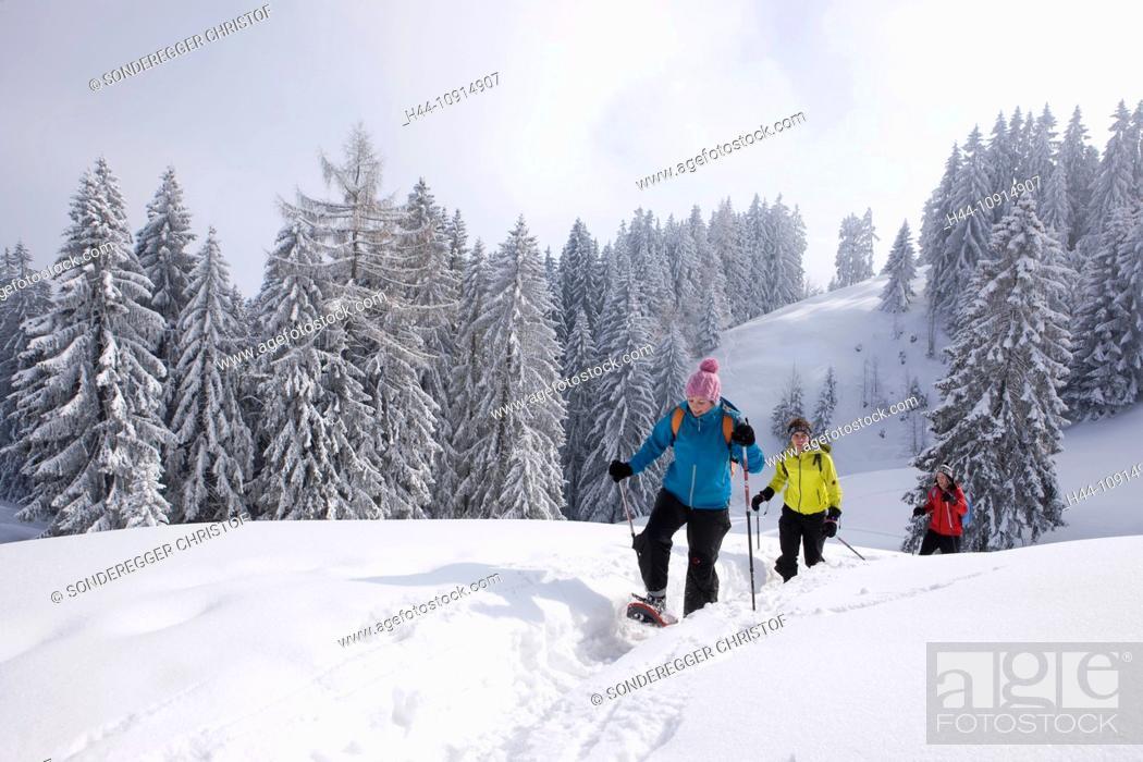 Canton Appenzell Switzerland Europe Ausserrhoden Winter