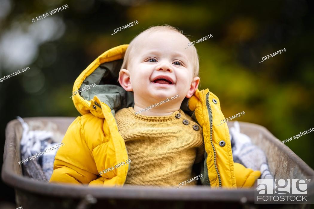 Stock Photo: Baby boy portrait in autumn leaves and wheelbarrow.