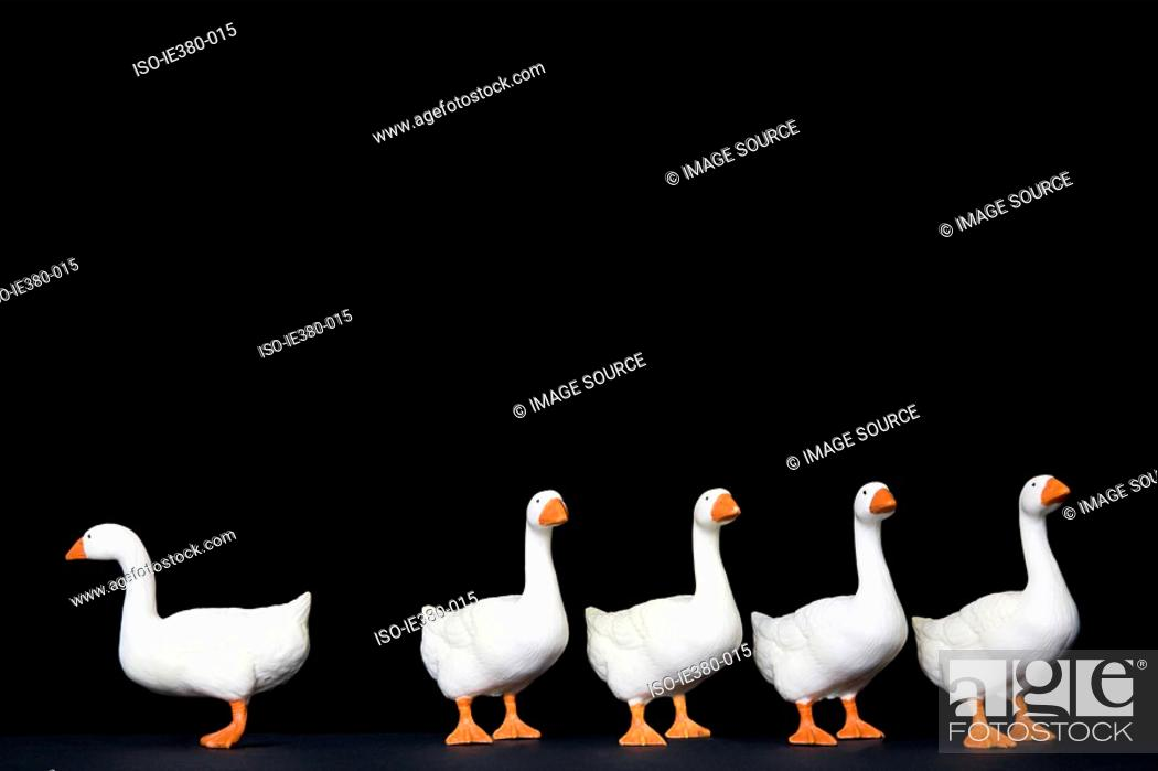 Stock Photo: Toy goose standing out from the rest.