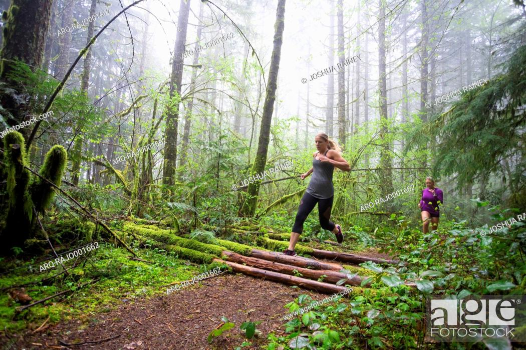 Imagen: Side view of two female runners exercising in mossy forest during rain and fog, Oregon, USA.