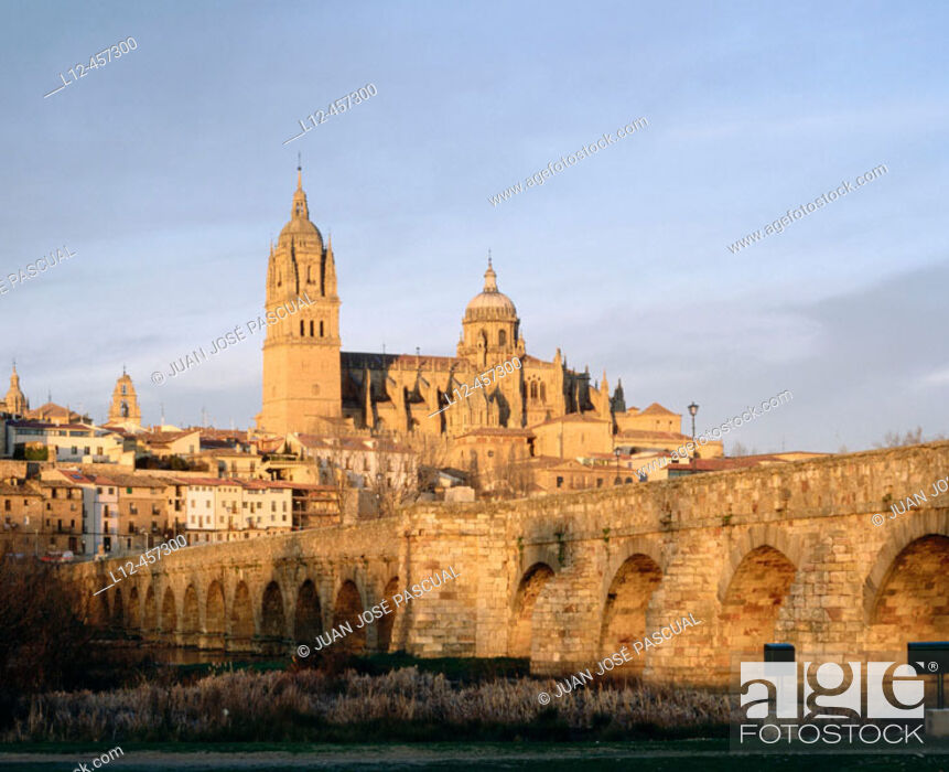 Imagen: Roman bridge and cathedral, Salamanca. Castilla-León, Spain.