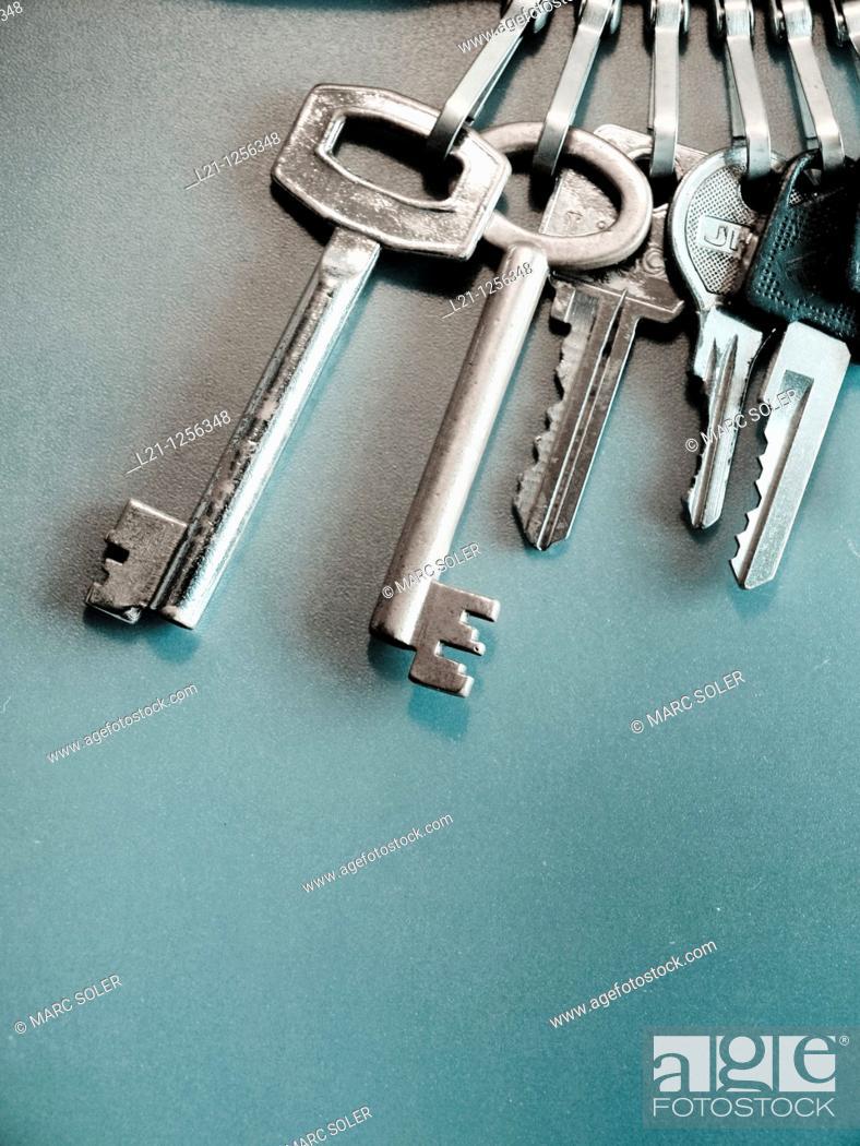 Stock Photo: Keys on a keychain, green background.