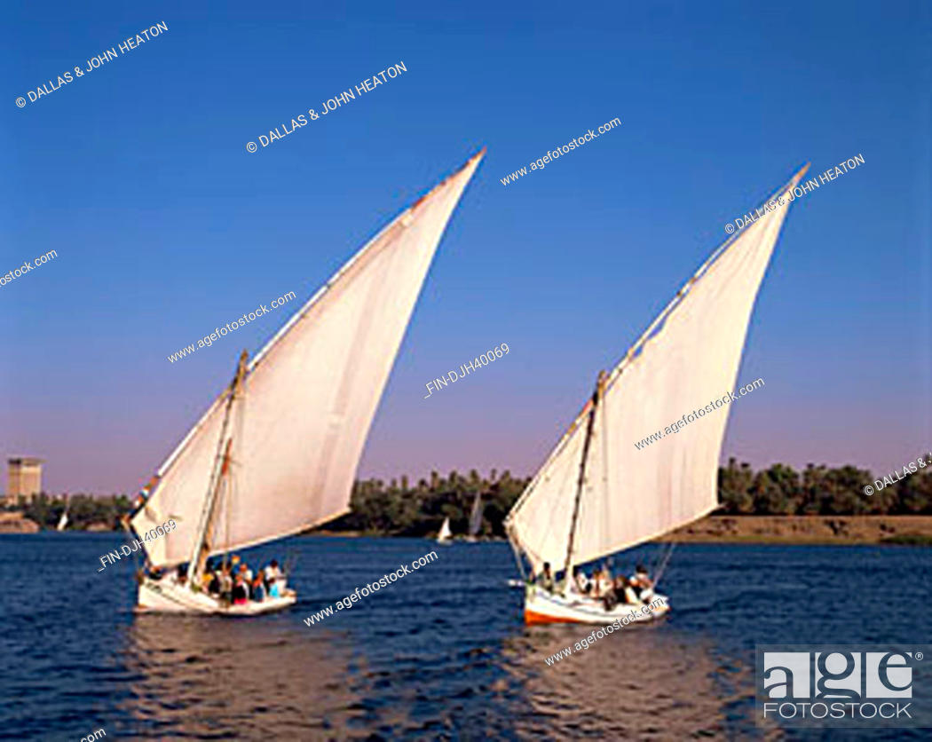 Stock Photo: Egypt, Aswan, Nile River, Feluccas, Sailing.