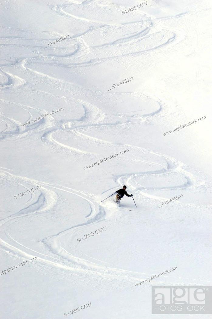 Stock Photo: Skiier, California. USA.