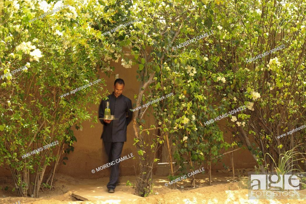 Imagen: Morocco, Anti Atlas, Guelmim Oued Noun region, Guelmim Province, rural district of Asrir, Tighmert palm grove, Dar Ahlam, Dream Houses, Southern Route.