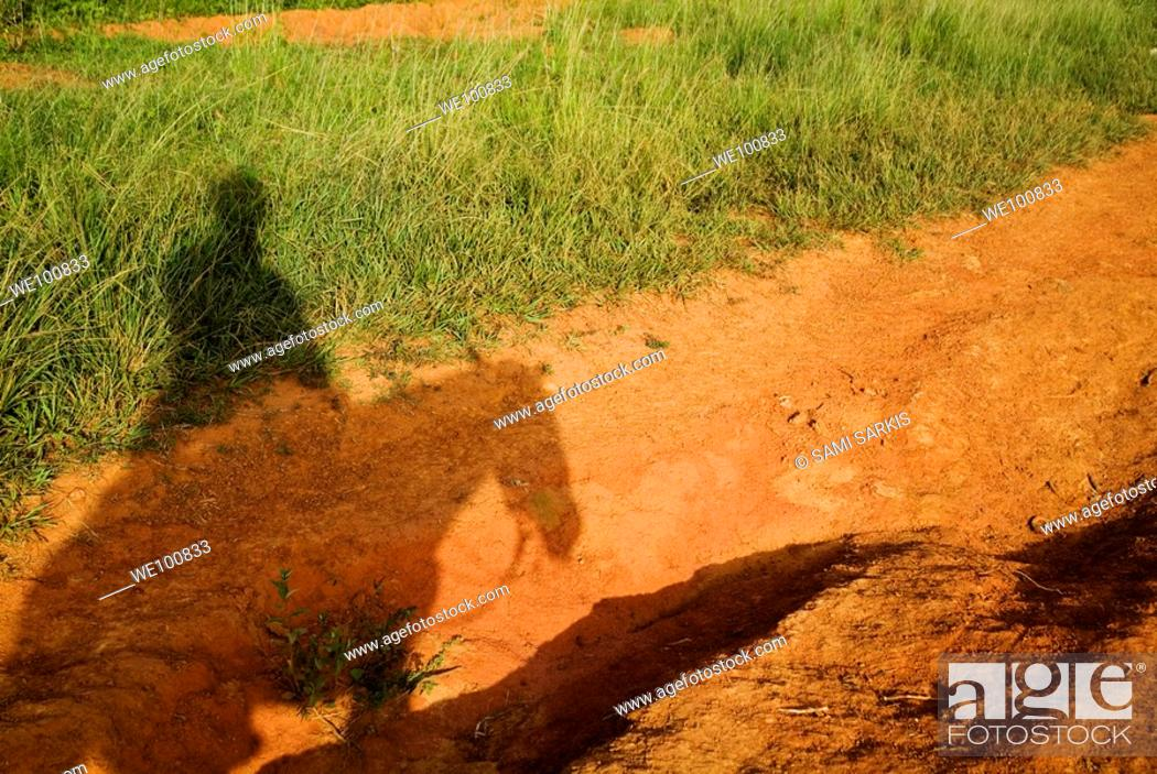 Stock Photo: Shadow of a man horseback riding in the countryside, Vinales Valley, Cuba.
