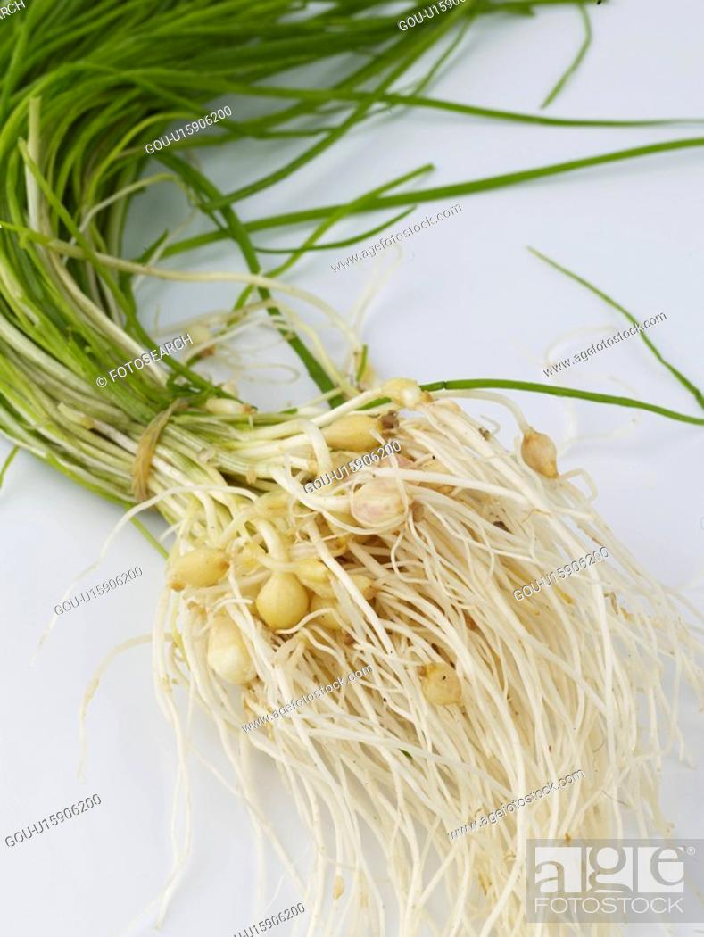 Stock Photo: ingredient, wild chive, food material, cuisine, food, wild garlic.