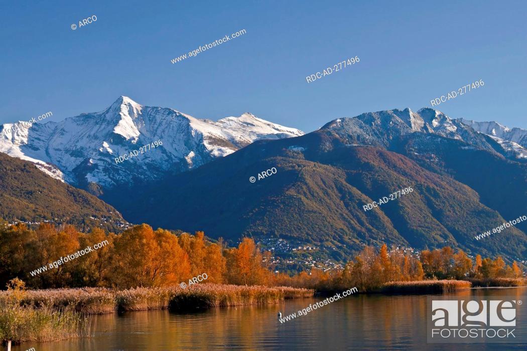 Stock Photo: Lago Maggiore, Ascona, district Locarno, Ticino, Switzerland.