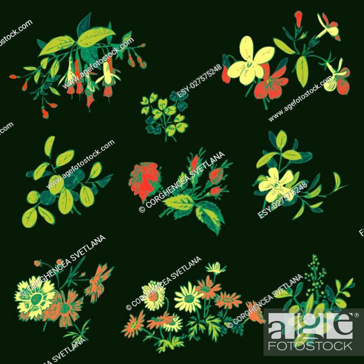 Stock Vector: Meadow flower and leaf set vector isolated on black, floral doodle vintage element decorative oriental design. Invitation, wedding, valentine day.