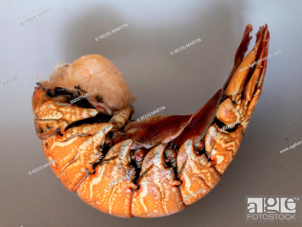 Stock Photo: Cooked lobster tail.