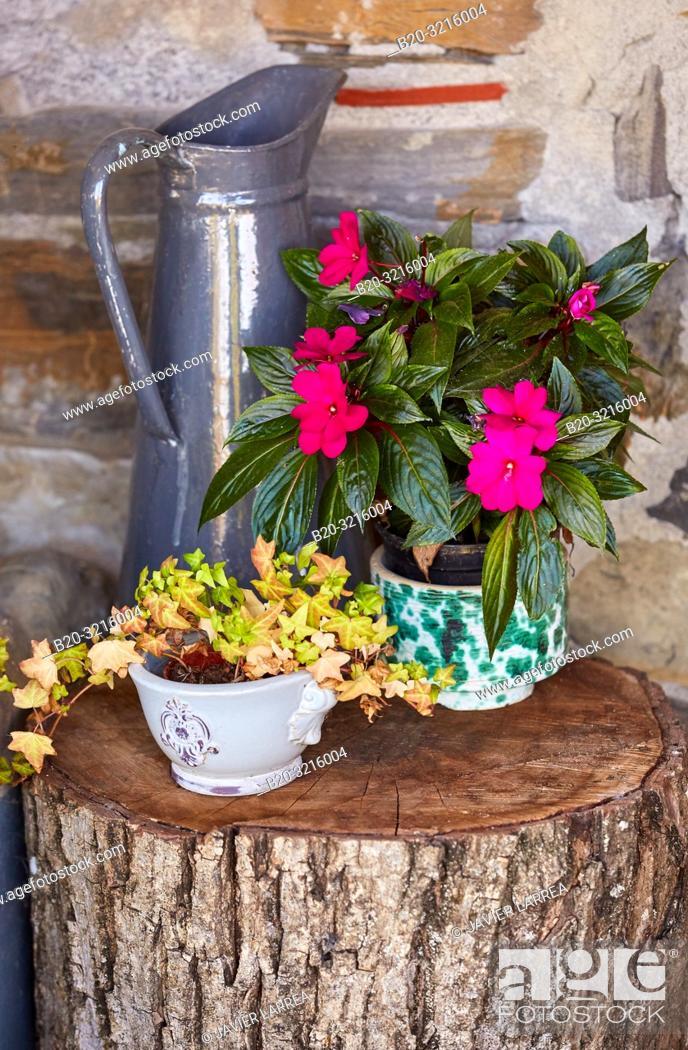 Stock Photo: floral details on the porch, Urain Apartments, Basque farmhouse, Deba, Gipuzkoa, Basque Country, Spain, Europe.